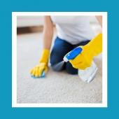 Czeka Cię czyszczenie dywanu na mokro? Nie wiesz jak to zrobić? ⬇️Nasze wskazówki na pewno Ci pomogą! ✅wybierz szampon do prania lub odkurzacz piorący, ✅do ręcznego mycia dywanu wybierz specjalistycznego szamponu, który bardzo dobrze się pieni, ✅uzyskaną pianę wetrzyj w strukturę dywanu miękką szczotką lub gąbką, ✅najwięcej uwagi poświęć miejcom najbardziej zabrudzonym. ⏩⏩Dzięki takiej metodzie pozbędziesz się skutecznie plam ale również zniwelujesz nieprzyjemny zapach!  📌Zależy Ci na szybkim i skutecznym wyczyszczeniu dywanu? Sprawdź ✔️profesjonalne środki do czyszczenia i pielęgnacji dywnanów na www.higiena24.com! Link w BIO!  #higiena #higiena24 #sprzatanie #czystosc #kobietykobietom #dywan #dywany #dywanzesznurka #krakow #instagrampl #livingroomideas #mjakmieszkanie #domoweinspiracje #kobietaniezalezna #matkaicorka #wmoimdomu #instamama #biuropodróży #przedsiebiorczosc #profesjonalnaskuteczność #architektporzodku #polskiemieszkanie #polskiewnetrze #kobieceinspiracje #domoweinspiracje #chemiaprofesjonalna #chemiagospodarcza #mojsalon #czystydom